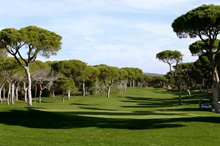 Millenium Golf Course